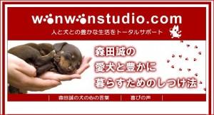 森田誠の犬のしつけ公式サイト