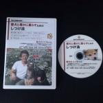 森田誠 柴犬のココちゃん