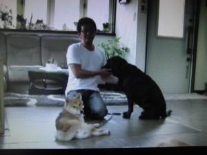 森田誠の犬のしつけDVD内容