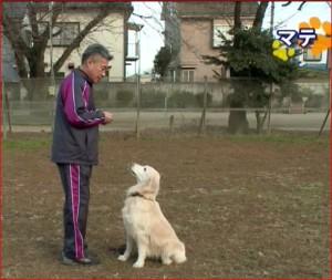 藤井聡のトレーニング