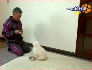 藤井聡の一口給仕法